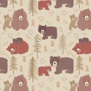 Big Bear Little Bear by Lewis & Irene